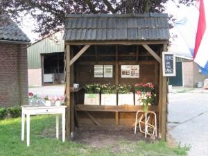 verkoopkraam van de pioenrozen bij de boerderij