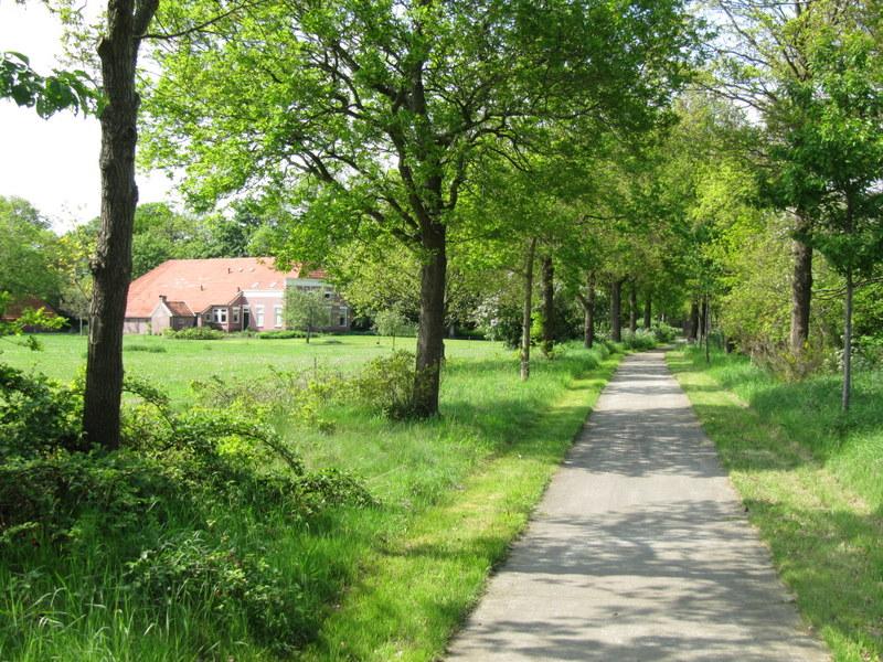 n-van-de-vele-fietspaden-in-westerwolde-2-500-m